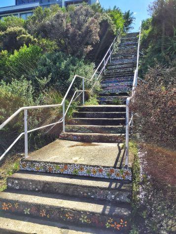 Coogee to Bondi Coastal Walk