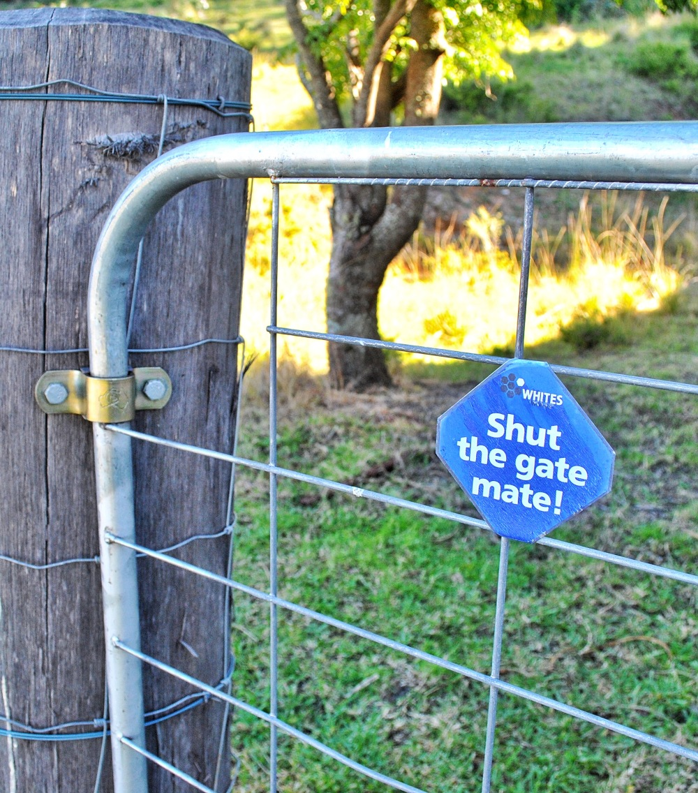 Moosewood Kangaroo Valley